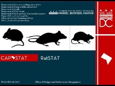 CapSTAT: RatSTAT, 11/29/17