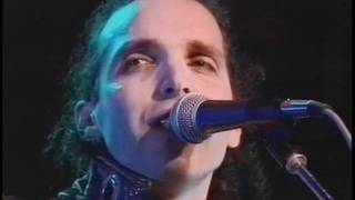 Joe Satriani - (1991) Big Bad Moon [featuring Brian May]
