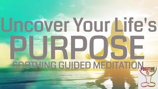 Finding & Living Your Life Purpose 10 Minute Guided Meditation on Purposeful Living Positive Energy
