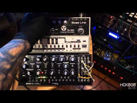 Moog Mother 32 ACID JAM with TB 303 and Modular ANALOG DRUMs