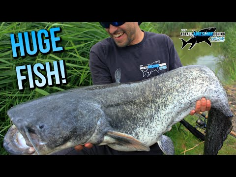 Fishing For HUGE CATFISH Using A Deeper Fishfinder | TAFishing
