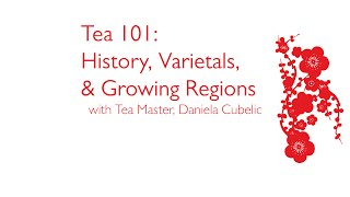 Tea 101: History, Varietals & Growing Regions