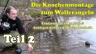 Knochenmontage Zum Wallerangeln - Erklärung Des Wallerknochens & Ausbringen Mit Der 2-Ruten-Technik