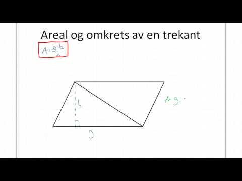 Areal og omkrets av en trekant