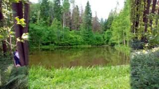 видео Усадьба Шахматово, Московская область, Солнечногорский район