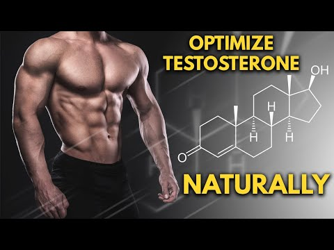 Maximize Natural Testosterone Levels Using These 6 Tips