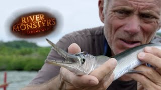 catching-a-needlefish-river-monsters