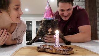 Puppy's 1st Birthday! (WK 293.6) | Bratayley