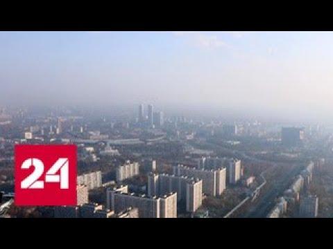 погода-24-бабье-лето-ставит-рекорд-за-рекордом-россия-24