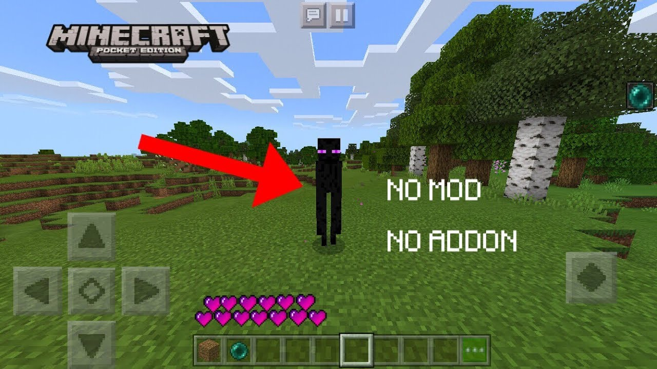 Minecraft PE - How to Play As ENDERMAN
