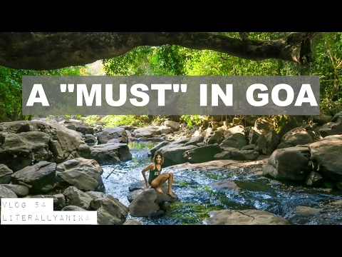 ONE DAY IN GOA? DO THIS! #TravelVlog 54