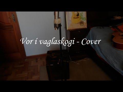 KALEO - Vor í Vaglaskógi - Acoustic Cover