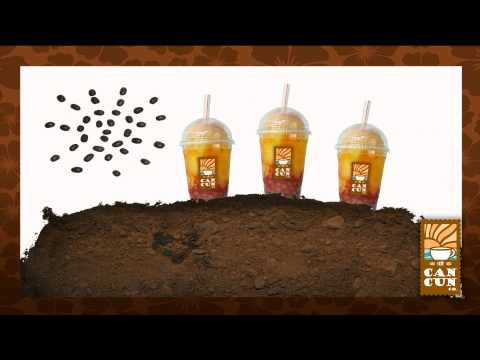 Café Cancun Co Promo  Primavera 2012