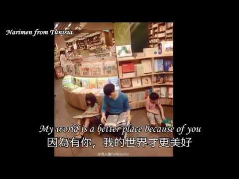Celine Dion : Because you loved me : 席琳狄翁 : 因為你愛過我 : Daved Woo 吳大偉 ( sub chinese)