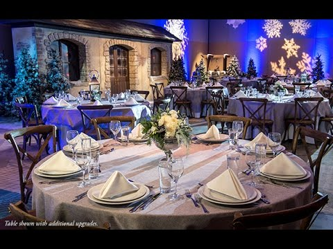 host-your-group's-winter-holiday-party-at-walt-disney-world-resort-(2017)
