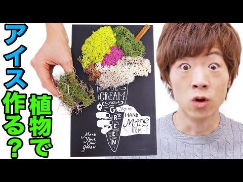 植物でアイス作ってみた!? - YouTube