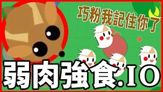【Mope.io】弱肉強食!我是可愛小白兔/巧粉我記住你了! ????