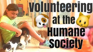 Volunteering at Animal Shelter | Family Vloggers | Humane Society |  Rescue