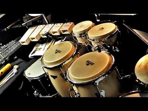 Latin Ringtone   Free Instrumental Ringtones Mp3 Download