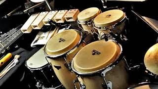 Latin Ringtone | Free Instrumental Ringtones Mp3 Download