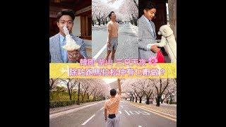 【謝利漫跑韓櫻花馬拉松 Day 3 | 情侶櫻花拍拖勝地 】