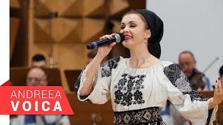 Descarca Andreea Voica - Ansamblul Timisul - Esti sufletul meu pereche (Live 2020)