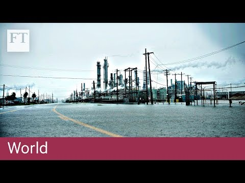 Business impact of Hurricane Harvey | World