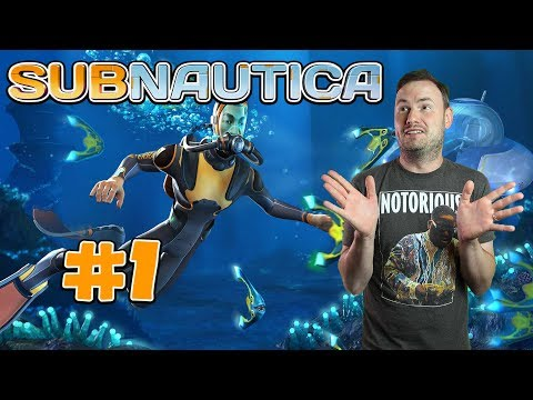 Sips Plays Subnautica (31/1/18) - #1 - We Start Once Again!