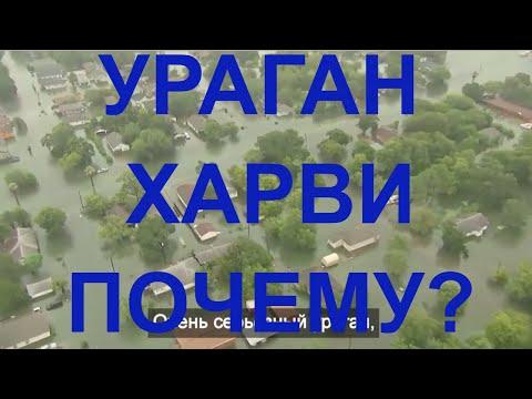 Ураган в Москве сейчас, 29 мая 2017: есть жертвы (ФОТО