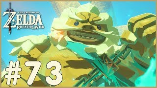 Zelda: Breath Of The Wild - Daruk (73)