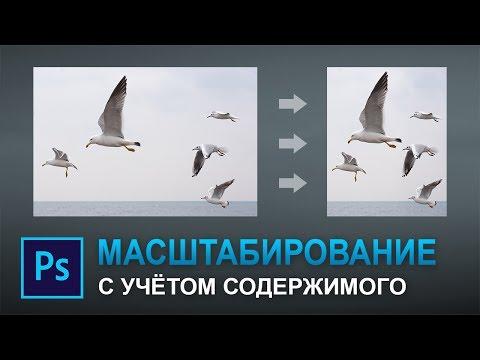 Масштабирование с учетом содержимого в фотошопе