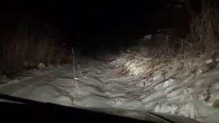新軽岡峠が通れちゃいました 1月だというのに その上の林道も
