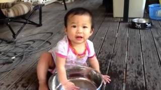 Vy playing in water bowl Thumbnail
