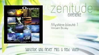 Vincent Bruley - Mystère bleuté 1