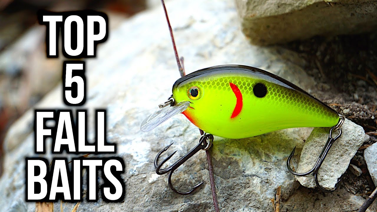 Top 5 Fall Bass Fishing Lures Youtube
