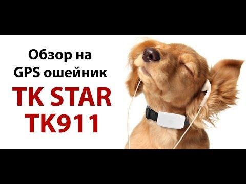 Обзор на GPS ошейник для собак TK STAR TK911