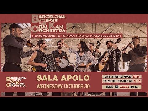 Barcelona Gipsy BalKan Orchestra Live In Apolo 2019 - Sandra Sangiao Last Concert