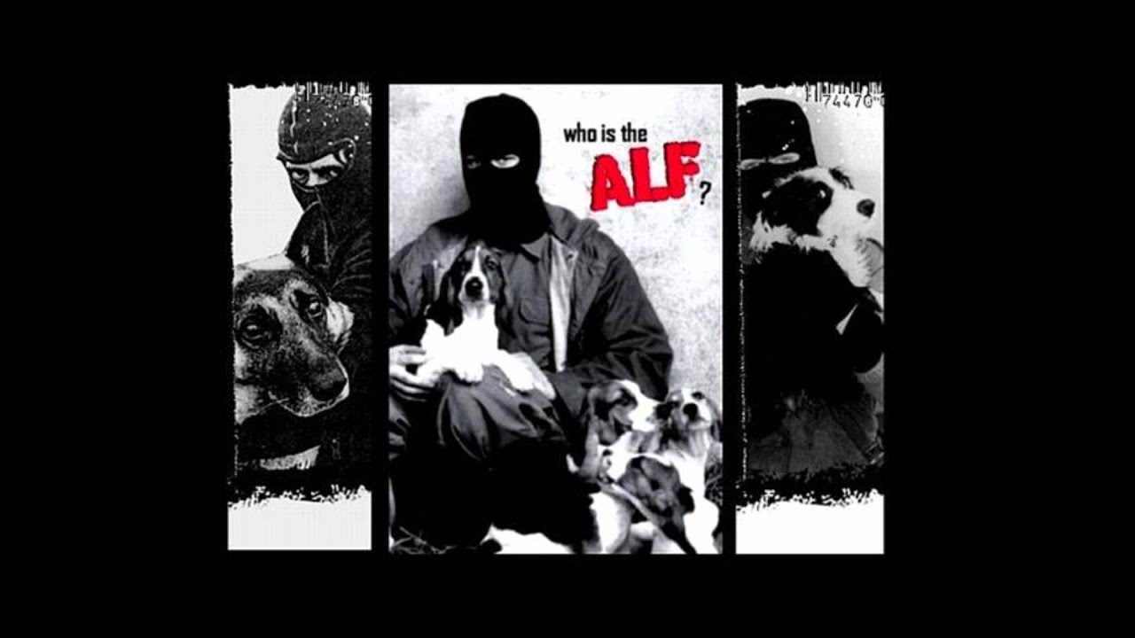 A l f animal liberation front youtube - Front de liberation des nains de jardin ...