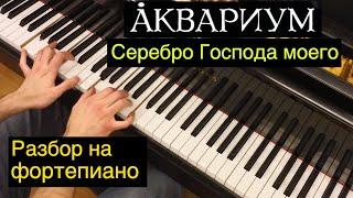"""Евгений, как сыграть...? / Аквариум - """"Серебро Господа моего"""" (видеоурок 10)"""