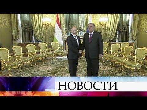 Смотреть Владимир Путин проводит переговоры со своим коллегой из Таджикистана. онлайн