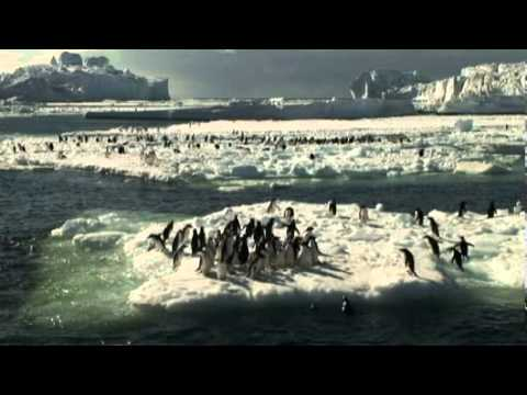 Antarctica, penguins, and climate change