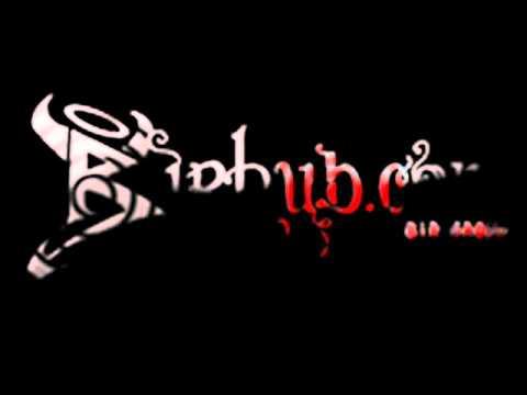 DJ REMIX NAGIN BEAT(www.birhub.com) .wmv