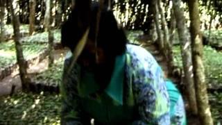 Sake Coffee Plantation- RWANDA.VOB