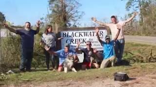 Blackwater Creek Koi Farms - ViYoutube