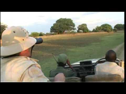Zambia - Let's go safari