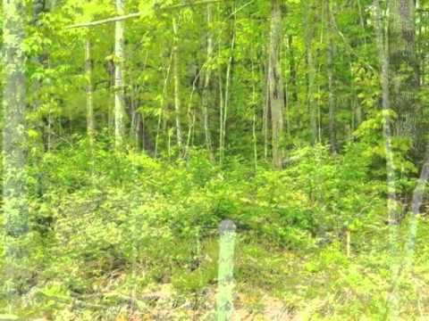 Homes for Sale - 698 Middle Rd Dresden ME 04342 - Edith Cram