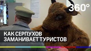 Охота на туристов в аэропорту «Домодедово»