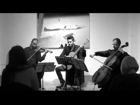 FAN Ye---Serenata for Trio(M.Giuliani)