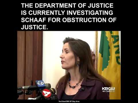 Illegal Aliens Convicted of Sex Crimes Among Those Who Evaded Capture After Oakland Mayor's Warning