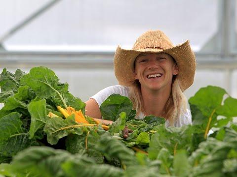 Food Tank Webinar Series with Clara Coleman